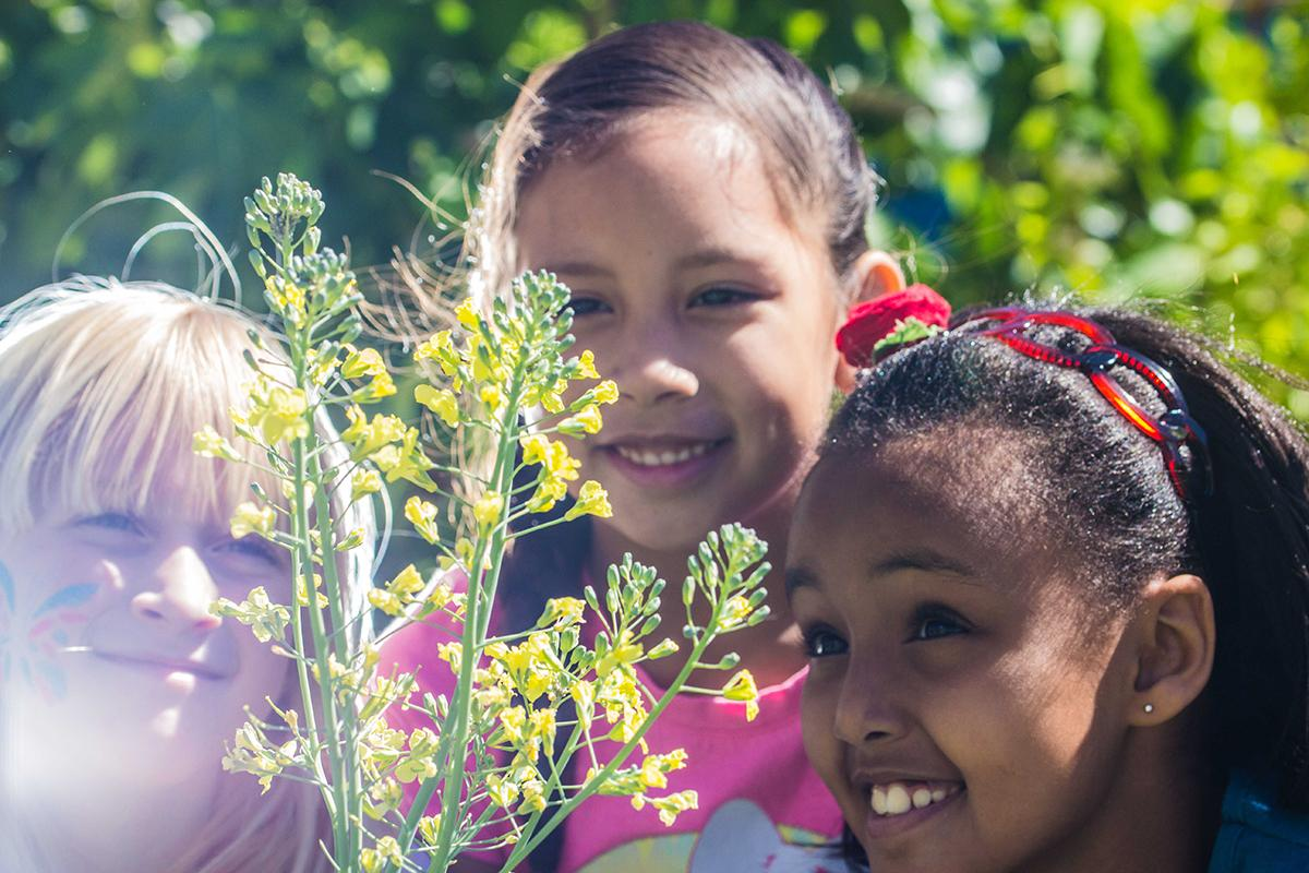 Bracken students grow and learn — literally — in the school garden.