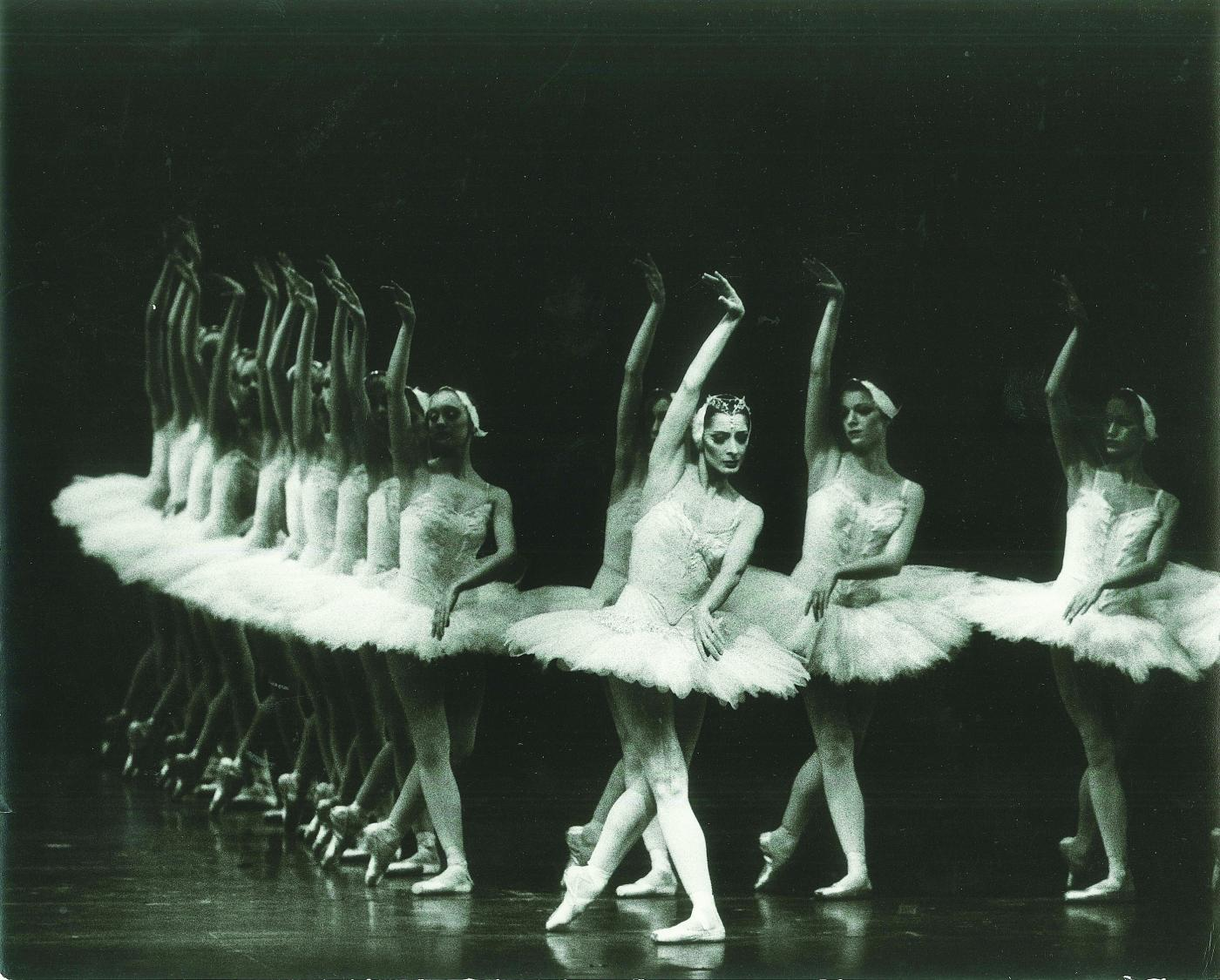 Rare birds: Photos from Swan Lake then and now, with Cynthia Gregory in an American Ballet Theatre production in the late 1960's (black and white).