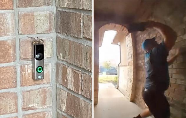 An Amazon delivery driver is now Tik Tok famous after a video of him killing a spider for a customer gained over 10 million views on the app.