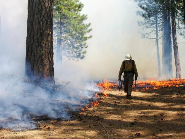 Controlled burns, like this one in Lassen Volcanic National Park, reduce the risk of extreme fires by clearing flammable brush.