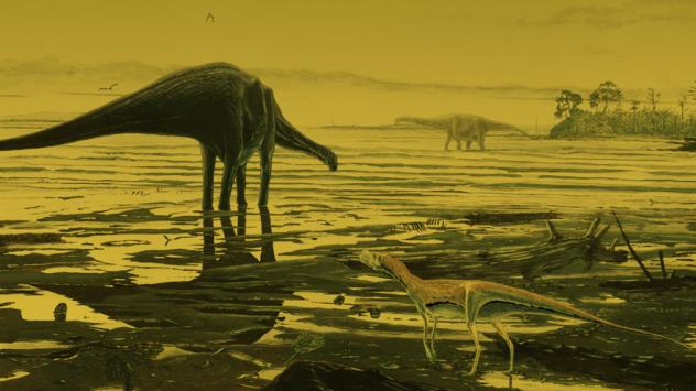Some of the tracks that researchers say were made by long-necked dinosaurs that roamed 170 million years ago.