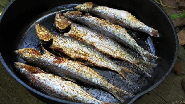 Herring are delicious, with flaky, mild meat and oil that sizzles on their skin when grilled over a flame. Chefs and ocean advocates have been promoting the environmental and health benefits of eating small fish like this. But the case of the San Francis