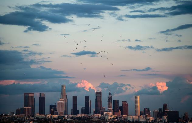 A view of downtown Los Angeles as seen from Hollywood in November 2015. California faces permanent water restrictions, ordered Monday by Gov. Jerry Brown, in its fifth year of drought.