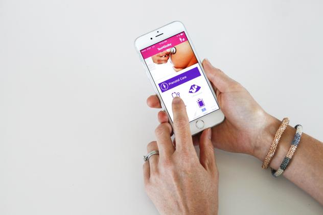 The Text4Baby app sends free, periodic text messages in Spanish or English to pregnant women and new moms about prenatal care, labor and delivery, breastfeeding, developmental milestones and immunizations.