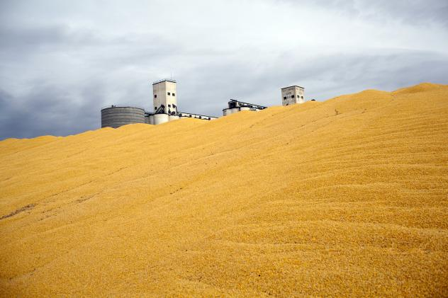 Surplus corn is piled outside a storage silo in Paoli, Colo. Do federal farm subsidies encourage the production — and perhaps overconsumption — of things that we're told to eat less of, like high fructose corn syrup or meat produced from livestock ra