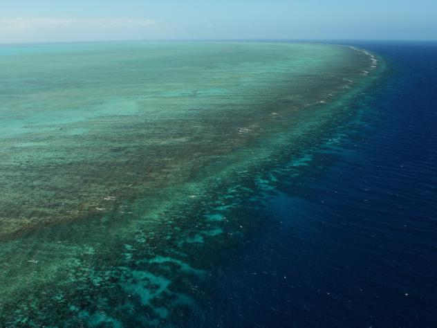 A northwesterly view of the Bligh Reef area off Cape York in northern Australia. Depths are red (shallow) to blue (deep), over a depth range of about 150 feet. The green area shows the newly discovered doughnut-shaped structures created by algae.