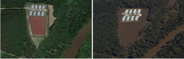 Aerial shots of a poultry farm near the Neuse River, in North Carolina, before and during flooding.