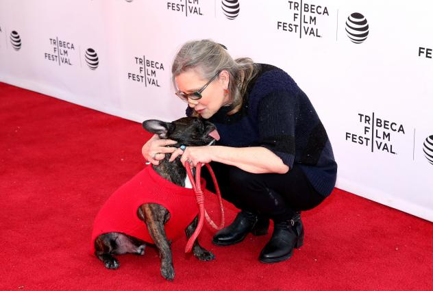 Photographers take photos of Carrie Fisher's dog, Gary Fisher, before the screening of the film <em>Agassi (The Handmaiden — Mademoiselle)</em> at the 69th Cannes Film Festival in Cannes in May.