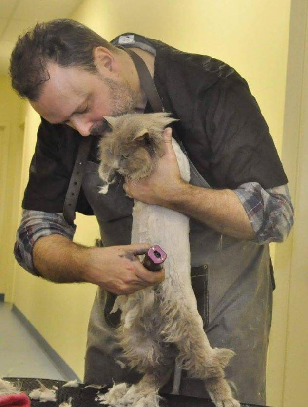 Former construction worker Alex Perry has found his calling as a cat groomer.