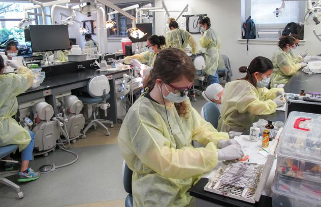 Mannequin patients are stationed at the Harvard School of Dental Medicine's Preclinical Lab, ready to have their teeth restored with crowns by a class of third-year dental students.