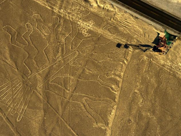 Peruvian authorities are pursuing charges against a truck driver who damaged the ancient lines at Nazca on Saturday. Here, an aerial view of the geoglyph known as the Guarango Tree at the site in 2014.