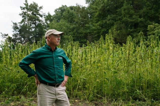 Mount Vernon is able to grow industrial hemp because of a provision included in the federal Farm Bill passed in 2014. It allows states to harvest the crop in limited supply for research purposes only.