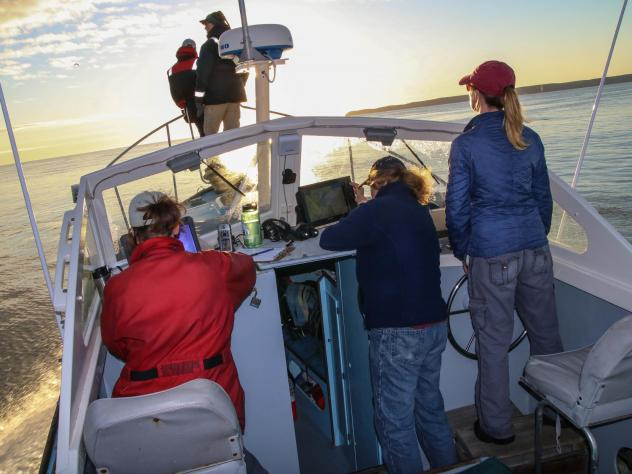 The New England Aquarium survey team often passes East Quoddy Lighthouse in Campobello, New Brunswick. Porpoises, seals, and whales abound in the waters nearby.