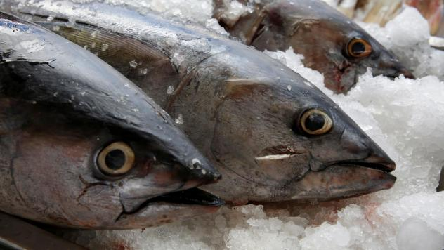Tuna, seen on display last year at a fish market in Mexico City. The World Trade Organization dealt Mexico a defeat on appeal Friday, dismissing the country's argument that labeling regulations in the U.S. violated WTO rules.