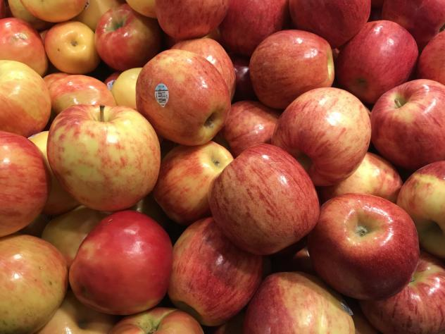 Genetically modified foods, like these apples, are widely considered by scientists to be safe.