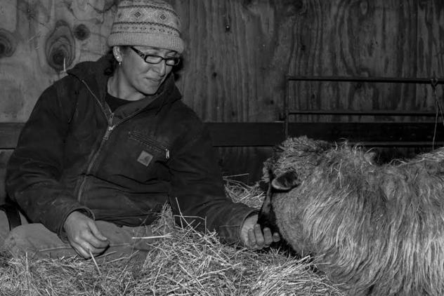Mickey Willenbring tends to one of her Navajo-Churro sheep at Dot Ranch in Scio, Ore.