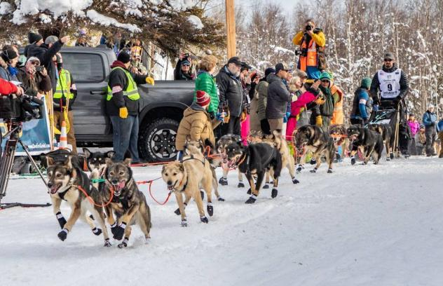 Peter Kaiser and his team of dogs take off at the start of the Iditarod race.