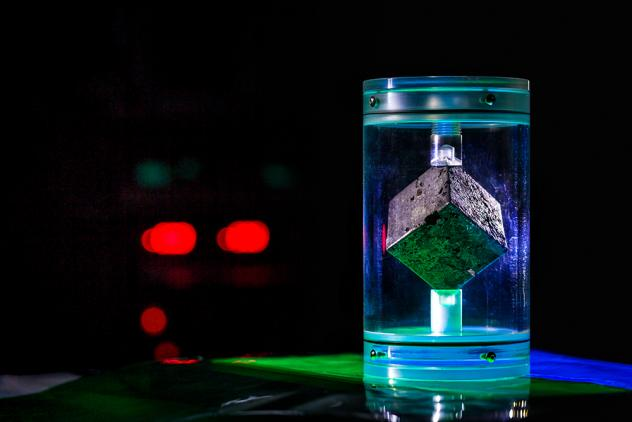 This cube of uranium metal came from a reactor that was built by the Nazis during World War II. Hundreds of others like it are now missing.