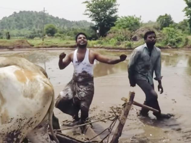 "Farmers Anil Geela, left, and Pilli Tirupati do their version of the Kiki Challenge, dancing to Drake's song ""In My Feelings."" In the mud. With oxen."