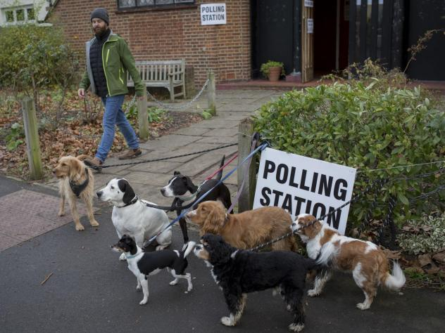 Dogs wait for their owners outside a polling station in London, part of a popular tradition of taking pets to the polls. The U.K. is voting in a general election to select 650 members of Parliament.