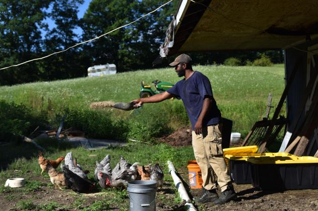 Daryl Minton, 45, throws chicken feed into a yard where the chickens roam at the Triple J Farm in Windsor, N.Y. Minton lives and works on the farm his grandfather, James Minton, bought it a decade ago. Between lending discrimination and rising costs, man