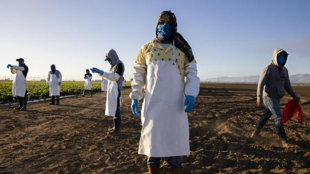Before massive wildfires broke out in California, farmworkers already had to take extra precautions for COVID-19. Now they must worry about dangerous air from wildfires. In this photo, farmworkers arrive early in the morning to begin harvesting on April