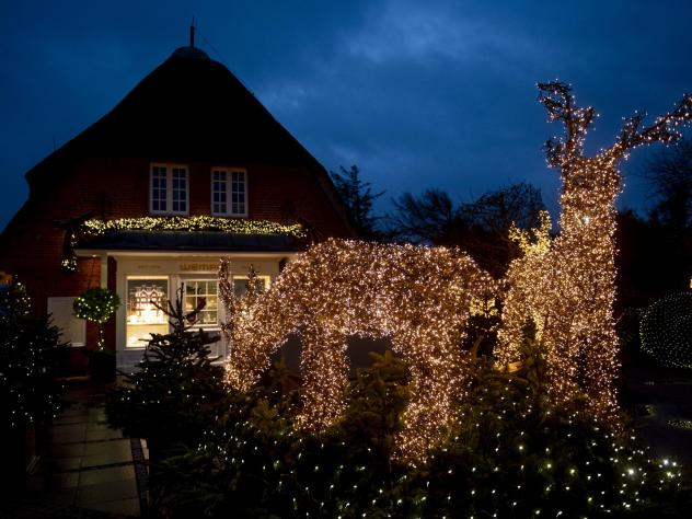 With countless lights, Christmassy illuminated man-high trees and reindeer decorate the entrance of a shop