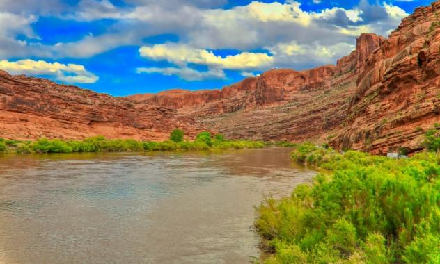The Colorado River is at historic lows as a severe drought deepens across the West this summer.