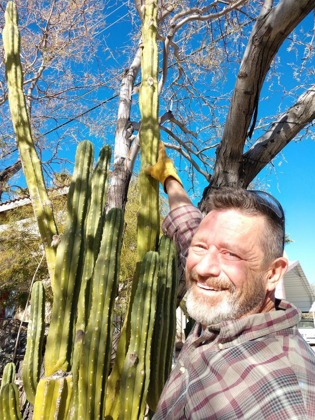 Norm with Cacti