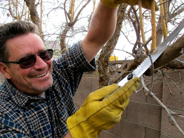 Norm Pruning