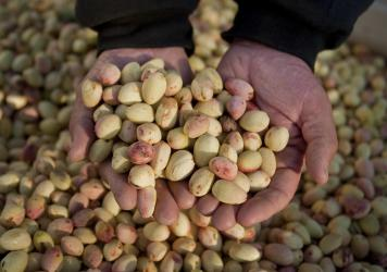 California is the top nut grower in the U.S. The booming industry that has attracted organized agricultural crime rings. (AP Photo/Justin Kase Conder)