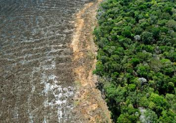 Aerial picture of a deforested area close to Sinop, Mato Grosso State, Brazil, taken on August 7, 2020. Mato Grosso is one of the leading producers of soybeans in the world.