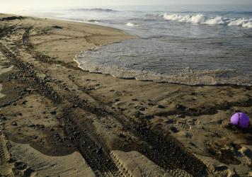 Oil is seen on the beach in Huntington Beach, California on October 3, 2021, after a pipeline breach connected to an oil rig off shore started leaking oil, according to an Orange County Supervisor.