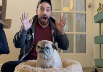 Jonathan Graziano with his pug, Noodle. The two have taken to forecasting the mood of the day based on whether Noodle stands up or flops down in bed.