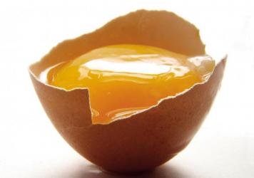 """""""The egg is a lens through which to view the entire craft of cooking,"""" says food writer Michael Ruhlman."""