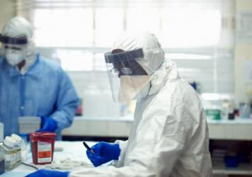 Some blood plasma samples collected from Ebola patients in West Africa also contained GB Virus-C.