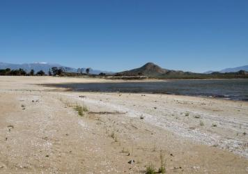 """Last fall, the drought revealed dozens of large tractor tires that had been submerged under the water of Lake Perris. The """"tire reef"""" had been placed under the water in the 1970s as a fish habitat."""