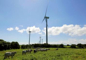 Renewable energy sources — such as the Eolo wind park about 75 miles south of the Nicaraguan capital, Managua — generate about half of the country's electricity. Officials predict that figure could rise to 80 percent within years.