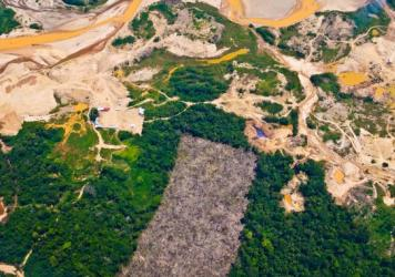 A massive gold mining zone in eastern Peru has turned thousands of acres of rain forest into wastelands. This strip of mining in La Pampa is 5 miles wide and 40 miles long.