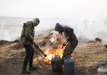 In a village outside of Jenin, in the West Bank, Palestinian farmers harvest wheat early and burn the husks to yield the smoky, nutty grain known as freekeh.