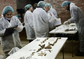 """The initials """"M.C"""" are on a wooden plank of an otherwise unidentified coffin in the crypt beneath the Convent of the Barefoot Trinitarians in Madrid. Testing proved that the remains belonged to Spanish writer Miguel de Cervantes, who died in 1616."""