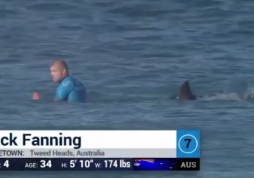 Australian surfer Mick Fanning narrowly escapes a shark attack.