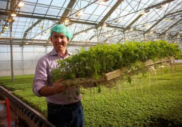 Paul Lightfoot, CEO of BrightFarms, in his company's greenhouse in Lower Makefield Township, Penn.