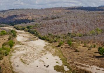 "<!--?xml version=""1.0"" encoding=""UTF-8"" standalone=""no""?--><p>The Lukala River flows through the dry season. In places, the river flows above ground, and elsewhere it travels under the dry sand. Elephants know where to dig for the underground water.</p>"