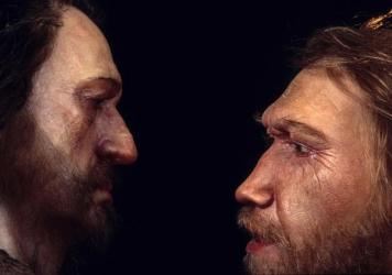 A reconstruction of a Neanderthal man (right) based on skull found at the La Ferrassie rock shelter in Dordogne Valley, France. He's face to face with a male <em>Homo sapien.</em>