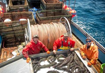 The captain and crew of the Moriah Lee pose with sablefish caught off the coast of Half Moon Bay, Calif. A new study found that fishermen in the West Coast sablefishery were much less likely to engage in risky behavior — like sailing out in stormy weat