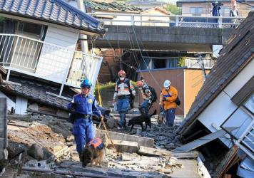 Rescue dogs are brought in for the searching operation on Saturday in Mashiki, Kumamoto, Japan.