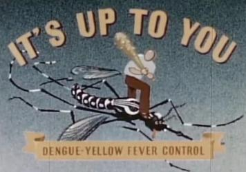 The title card from a 1945 government film about the campaign to control <em>Aedes aegypti</em> mosquitoes and prevent dengue and yellow fever.