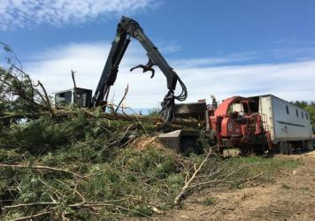 Logger Greg Hemmerich and his crew feed low-value trees into a wood chipper, before bringing the chips to ReEnergy Holdings' biomass plant in Lyonsdale, N.Y.