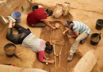 A team of archaeologists work at the excavation site in the coastal Israeli city of Ashkelon on June 28.